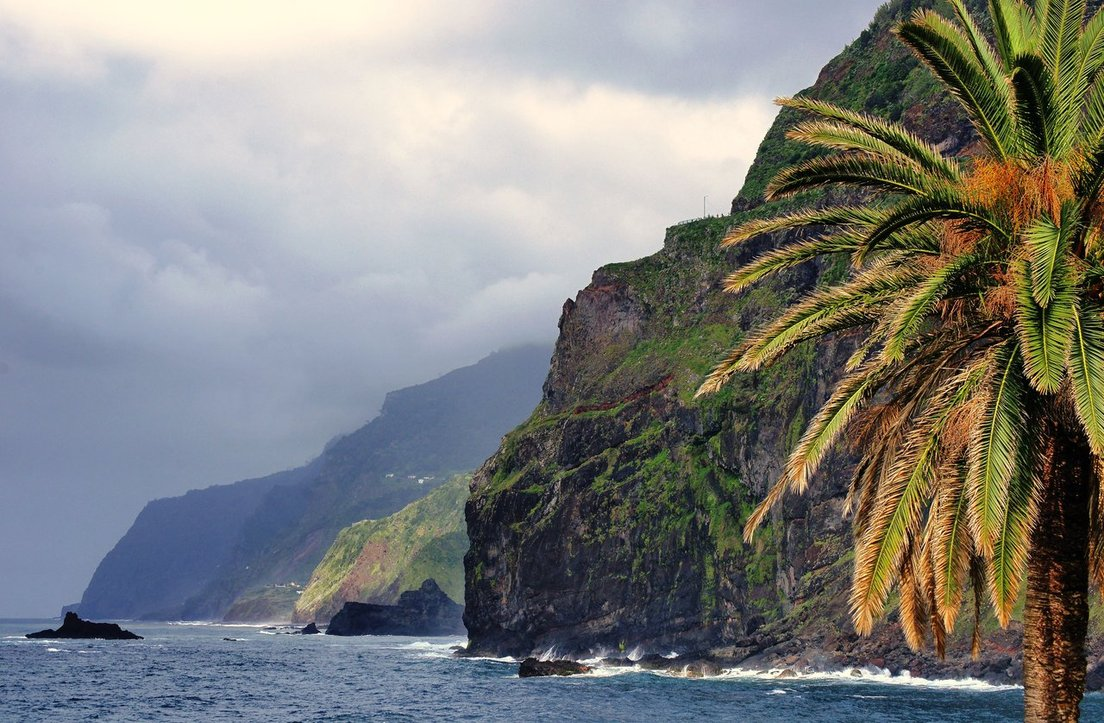 Cliffs of madeira