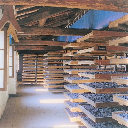 drying racks for grapes